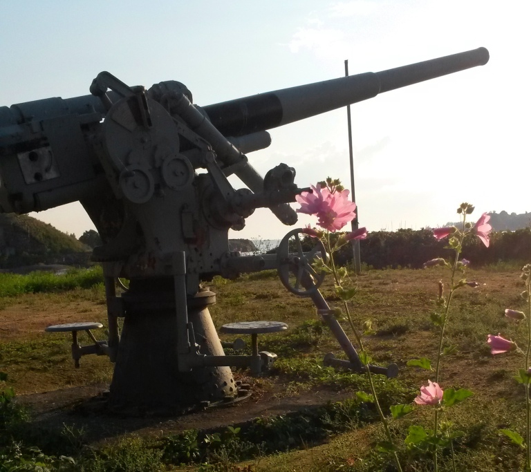 Cannon and flowers in Helsinki @pratserie