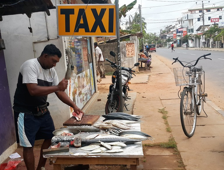 Fisherman in Negombo (Sri Lanka)
