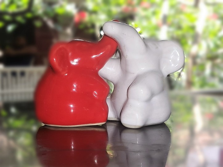 elephant souvenir from Sri Lanka @pratserie