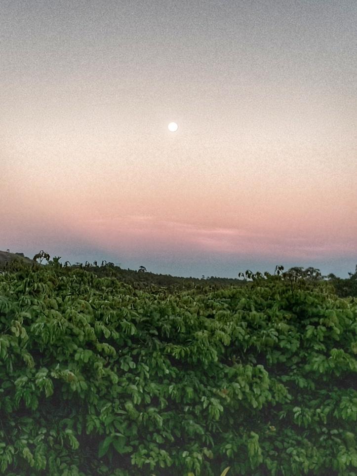 Superlua ao amanhecer @pratserie