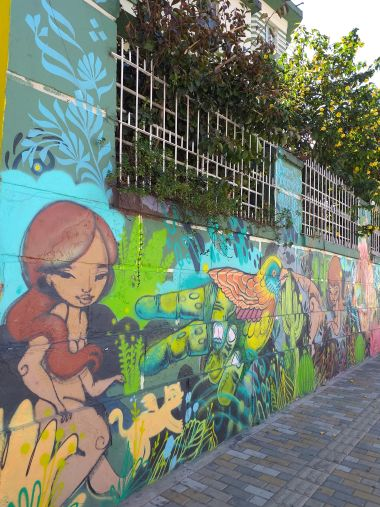 viver-na-colombia (4)