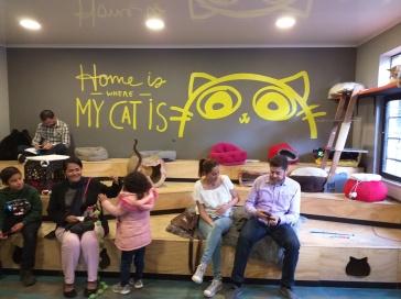 cat-cafe-@pratserie (10)