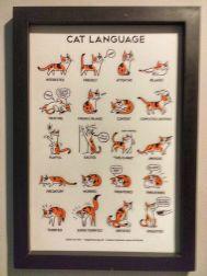 cat-cafe-@pratserie (5)